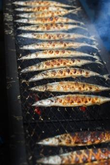 さんま サンマ 秋刀魚 鮮魚 炭火焼 秋刀魚の塩焼き サンマの塩焼き さんまの塩焼き さかな 魚 秋 秋の味覚 大量 大漁 焼き魚 炭