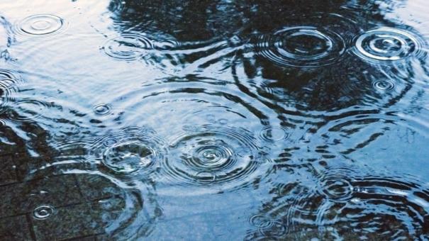 地面に広がる雨の足跡 #2の写真