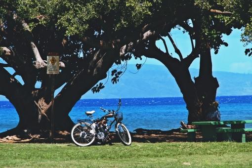 ハワイ マウイ島 サイクリング 自転車 南国 自然 ゆったり 海 休憩 旅 癒し