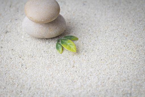 和 和風 禅イメージ 庭 石 枯山水 砂 砂紋 レーキ 日本 日本庭園 日本文化 庭園 わびさび 和寺 石庭 造園 伝統 白砂 風景 イメージ 京都  縁側 風景 緑 植物 葉 積み重なる