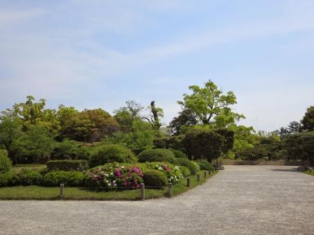 四国 香川 香川県 栗林公園 公園 日本庭園 高松 庭園 高松市 和 和風 日本 景色 自然 風景 庭 観光 観光地 名所 観光名所 緑 みどり グリーン 林 森林 植物 木 青空 晴れ スカイ 空 ブルー 雲