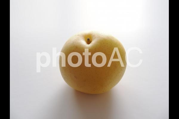 二十世紀梨(ナシ)の写真