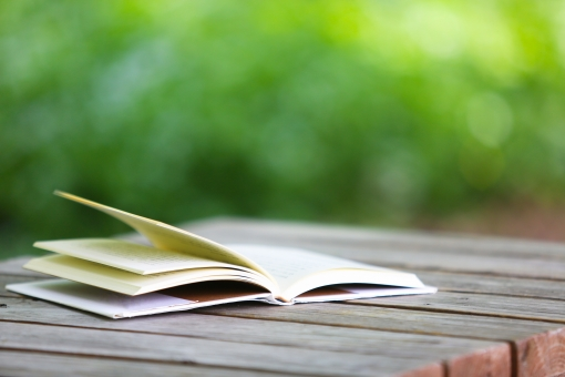 屋外で読書の写真