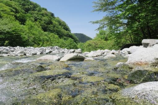 新緑と清流と青空の景色の写真