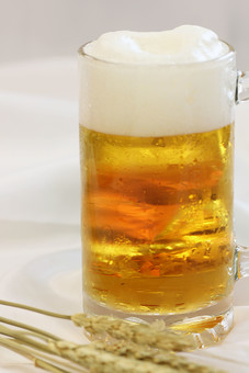 生ビール ビール アルコール お酒 ドリンク 飲み物 ジョッキ 泡 ビアガーデン ビアホール 夏 乾杯 白背景 白バック ホワイトバック 俯瞰 飲み 呑み 一杯 1杯 室内 屋内 洋食器 食器 飲料 飲物 麦