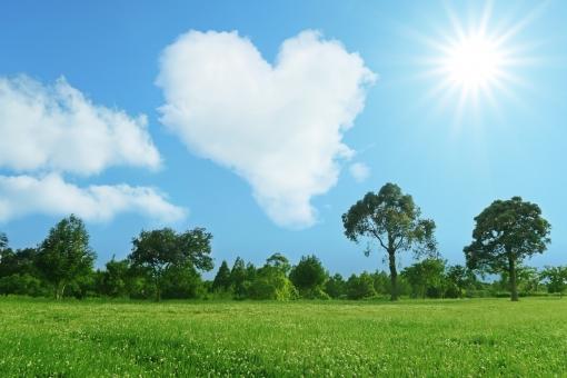 夏の太陽とハート型の雲と青空と草原の公園の写真