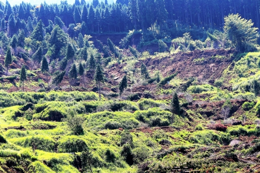 熊本 地震 阿蘇 復興 復旧 災害 震災 斜面崩壊 断層 震度 マグネチュード 震源 崩落 フェアウエー 崩壊 森林 樹木 倒壊 がけ崩れ 山崩れ 危険 土砂崩れ 土砂流出 地滑り 地すべり 被害 甚大