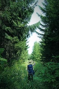 冒険をする人の写真
