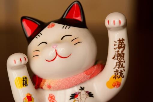 招き猫 まねきねこ 猫 幸せ 瀬戸物 招福 福 笑顔 笑い 白 祈願 貯金箱 開運