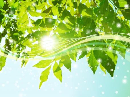 自然 植物 風 そよ風 波 空気 新緑 流線 木漏れ日 木洩れ日 太陽 日 黄緑 明るい 山 林 葉っぱ 木の葉 木葉 はっぱ 爽やか 木の枝 小枝 風景 木 樹木 森 グリーン エコ エコロジー 環境 eco eco 森林 森林浴 森林セラピー いやし リラックス リラクゼーション やすらぎ 安らぎ マイナスイオン 健康 美容 背景 背景素材 テクスチャ テクスチャー バックグラウンド 3月 4月 5月 6月 7月 8月 9月 10月 夏 緑 春 初夏 癒し きらめき キラメキ 優しさ やさしい 優しい