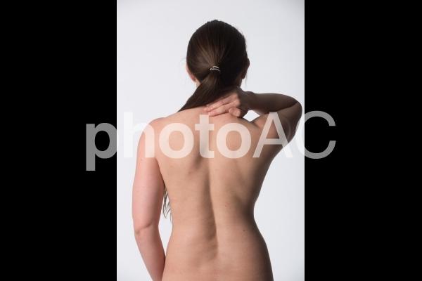 女性の背中12の写真