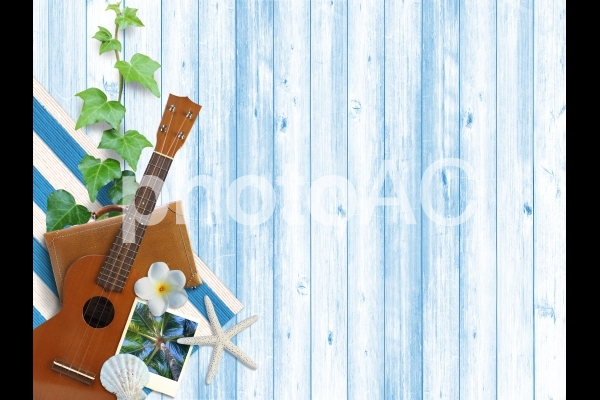 背景【夏のイメージ】の写真