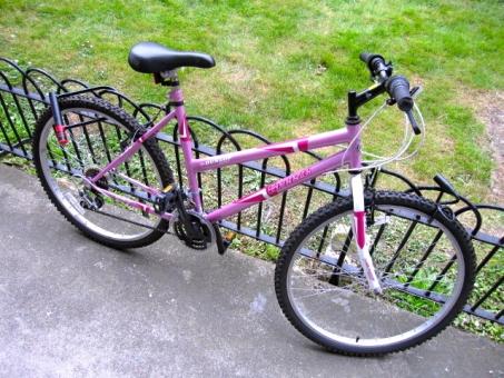 マウンテンバイク 自転車 Bicycle Mountain bike ピンク 白 pink white タイヤ 車輪 駐車