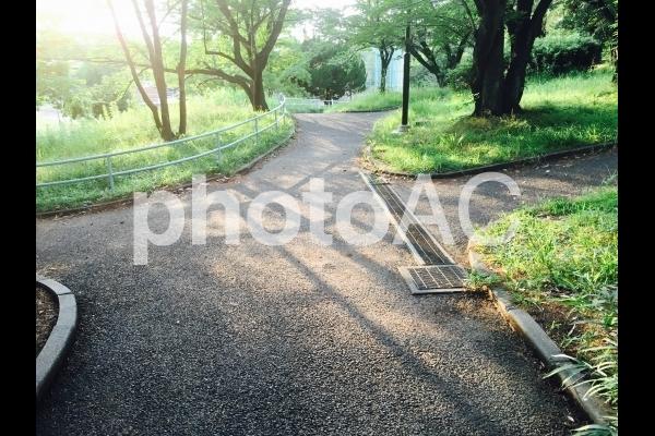 分かれ道5の写真