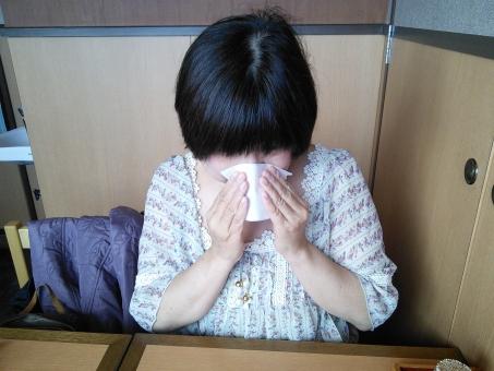 花粉症 鼻をかむ ティッシュペーパー 病気 スギ花粉 鼻水  症状 くしゃみ 咳 テーブル 辛い 50代 日本人 アジア人 Japan Japanese Woman 高齢者 おばさん おばあさん お母さん お姉さん お姉さん 妹 中高年 家族 シニア 女性 女の人 大人