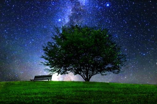 椅子 スペース リラックス 夏 空 観察 緑 風景 公園 木 キレイ きれい 葉 青 自然 枝 素材 背景 黒 ムード 草 光 草原 夢 希望 森 バックグラウンド 夜 輝き 背景素材 上空 幻想的 絶景 眺め 高原 美しい 壁紙 神秘 イメージ 深夜 輝く 夜空 夜中 星 落ち着いた テクスチャー 天体観測 きらきら キラキラ テクスチャ スター 天体 惑星 宇宙 ロマンティック プラネタリウム 七夕 CG 流れ星 静寂 南 天文 長野県 ロマンチック 願い ロマン 幻想 奇跡 星空 織姫 彦星 満天 天の川 星雲 恒星 星団 星座 短冊 ミルキーウェイ ファンタジー 閑静 長野 観測 流星 銀河 スターライト ファンタジック スバル 綺麗な 夜の空 太陽系 満天の星 コスモ ロマンチックな スペーシー スターダスト 彗星 星の観察 星の光 layw_星空 layw_風景