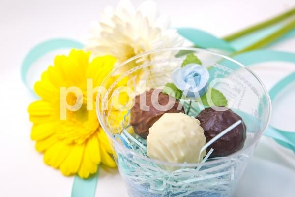 ガーベラとチョコレート_9の写真