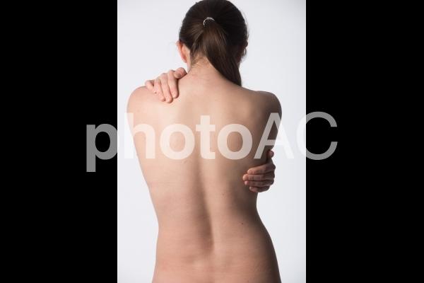 女性の背中11の写真