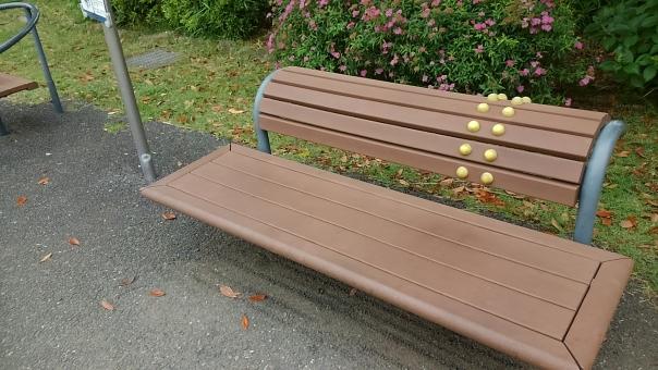 ベンチ 公園 健康 ツボ つぼ ツボ押し つぼ押し 背中 背中伸ばす 背中を伸ばす のばす 猫背 ねこ背 茶色 茶 ピンクの花