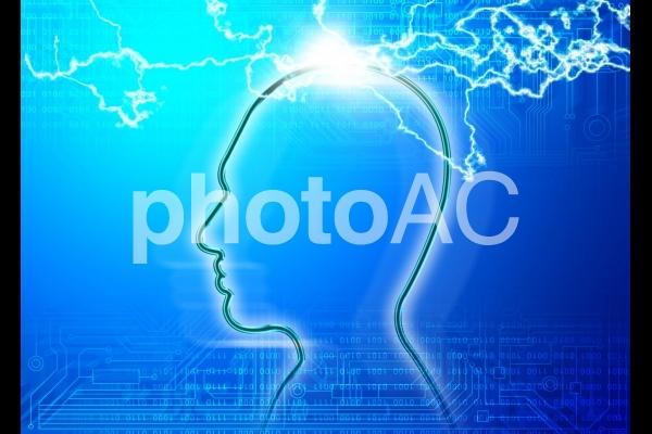 頭脳の写真