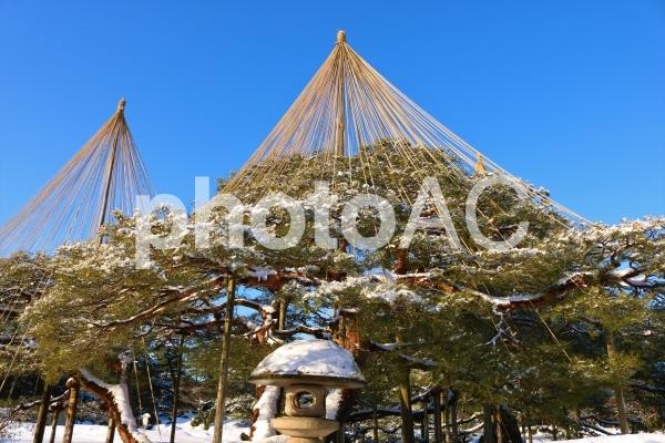 冬の兼六園の写真