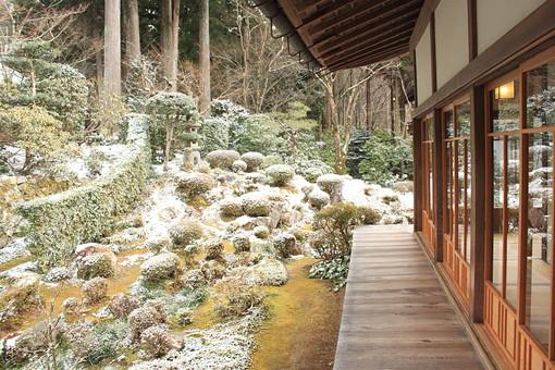 庭園 日本庭園 雪 初雪 積もる 被る 植物 日本家屋 縁側 家 草 盆栽 庭木 樹木 樹 木 木々 森 軒下 冬 窓 ガラス 明かり 電灯 田舎