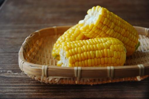 初夏 夏 7月 8月 自然光 テーブル 木のテーブル コピースペース 盛りつけ 盛り付け 盛付け 横 野菜 やさい トウモロコシ とうもろこし とうもころし カット ざる ザル 茹でたて 茹で野菜 corn yellow vegetable boiled summer