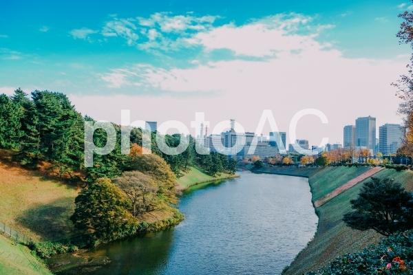 東京 桜田濠の写真