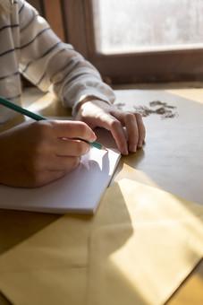 学生 記者 ライター 鉛筆 ペンシル 緑 ノート 帳面 日記 スケッチ レポート 筆記 メモ 書く 描く 記す まとめる 持つ 握る 執筆 右手 左腕 右利き 書斎 部屋 窓 机 テーブル デスク 室内 屋内 日光