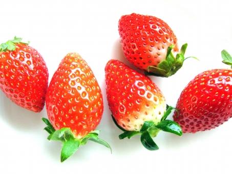 イチゴ いちご 苺 赤 strawberry ストロベリー 美味しい おいしい 瑞々しい みずみずしい red 白バック 甘い あまい
