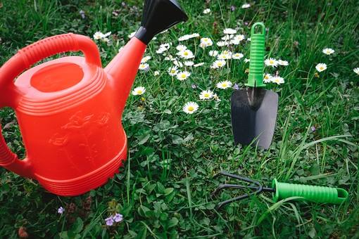 ガーデニング 園芸 花 白 草花 フラワー 植物 スコップ 移植ごて シャベル 熊手 くまで 鍬 じょうろ 水やり 並べる 放置 無造作 群生 ガーデン 庭 庭園 芝 芝生 庭仕事 庭いじり 作業 手入れ 園芸用品 屋外 野外