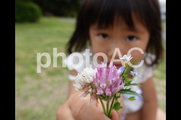 花束をくれる子供の写真
