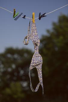 青空 空 お空 晴天 晴れ 快晴 青色 青い 青天井 蒼穹 蒼天  爽やか 爽快 さっぱりした 健康的  洗濯物 洗濯 干す 乾かす 乾す さらす  吊る 吊り下げる 吊るされた  ロープ ビニールロープ  洗濯バサミ クロスピン 洗濯ばさみ 留め具 日用品 生活雑貨 家庭雑貨 木々 ブラジャー ブラ 下着 アンダーウェア