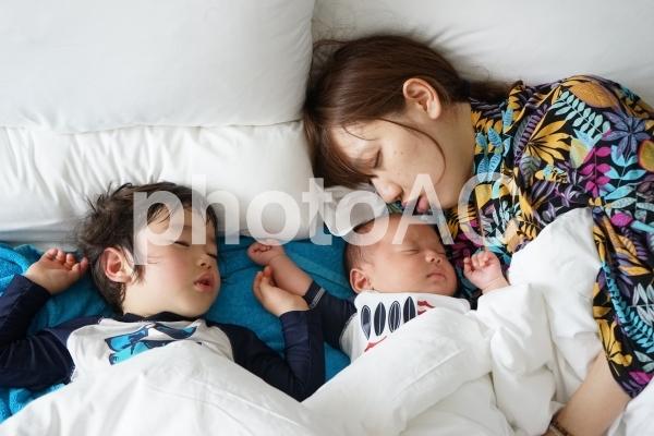 親子で昼寝の写真