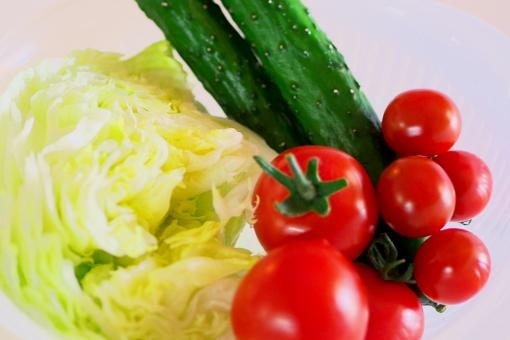 トマト プチトマト ミニトマト フルーツトマト とまと キュウリ 胡瓜 きゅうり レタス 野菜 生野菜 有機野菜 無農薬 サラダ 美容 健康 ダイエット ダイエット食材 食料 食材 食品 低カロリー ベジタリアン ベジタブル オーガニック ビタミンc ビタミンe カロチン リコピン グルタミン酸 カリウム 酵素 酸味 糖分 水分 水分補給 ポリフェノール 農家 農業 農園 栽培 ハウス栽培 家庭菜園 収穫 出荷 八百屋 スーパー 青果 産地直送 素材 食材イメージ 健康イメージ 美容イメージ 白背景 ホワイトバック 白バック 食べ物 たべもの