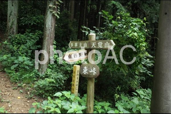 東峠の写真
