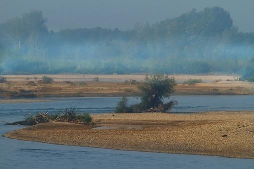 セルビア共和国 セルビア 南東ヨーロッパ バルカン半島 内陸 共和制国家 旧ユーゴスラビア セルビア・モンテネグロ 外国 外国風景 海外 海外風景 景色 風景 自然 美しい 美しい自然 植物 川 河 河川 岸 川岸 河岸 靄 もや 霞