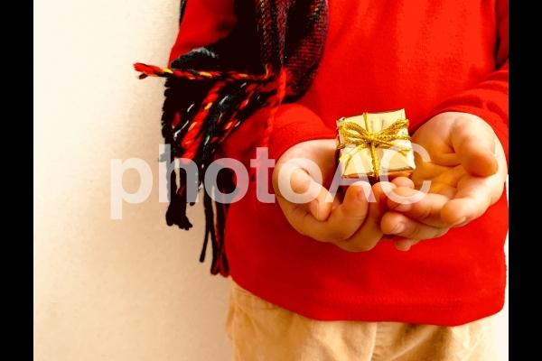 冬の贈り物。の写真