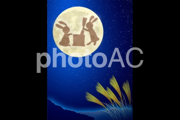 月 うさぎの写真