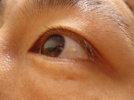 目 瞳 眼球 まつ毛 光彩 充血 疲れ 視力 コンタクト コンタクトレンズ 見る 視覚 近視 遠視 近眼 見える 可視 光