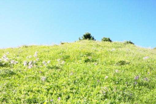 高原イメージの写真