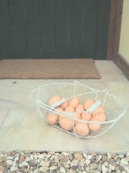 たまご 卵 食材 食べ物 たべもの 食 料理 調理 玄関 ドア 入口 地面 バスケット カゴ 籠 ワイヤー パステル パステルカラー ナチュラル エッグ