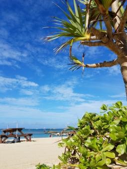 沖縄の夏の写真