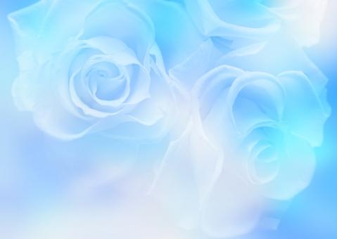 薔薇 ばら バラ ブルー うす青 水色 青色 青 淡い ホワイトデー バレンタイン バレンタインデー ブライダル 結婚 結婚式 ウェディング エステ 美容 きれい 美しい お祝い 記念日 誕生日 幸福 幸せ 背景 テクスチャ 壁紙 メッセージ メッセージカード