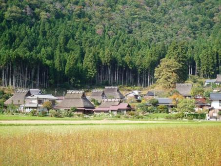 美山-2の写真