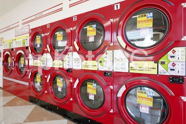 コインランドリー 乾燥機の写真