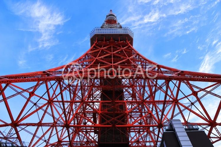 東京タワー画像(正面から見上げて)