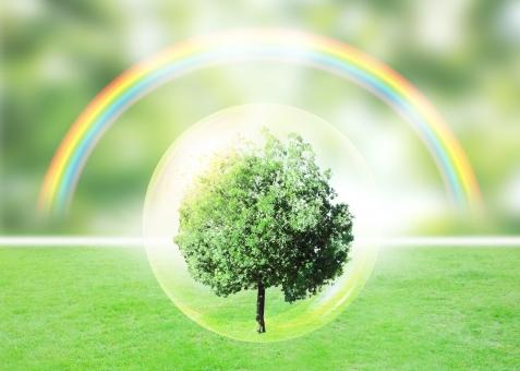 ヒーリング 自然 木 樹木 光 緑 green 虹 rainbow 希望 エコ エコロジー 環境問題 環境 自然保護 環境保護 共生 未来 将来 省エネ 省エネルギー 再生 スピリチュアル カウンセリング リラクゼーション リラックス 神秘 大地 疲労回復 セラピー
