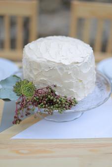 屋外 ガーデンウェディング ケーキ ウェディングケーキ 生クリーム 結婚式 披露宴 ケーキカット ブライダル ウェディング ガラスの器 植物 テーブルセッティング おもてなし スイーツ 椅子 イス 甘い お祝い ショートケーキ 料理 食べ物 白 デザート 手作り