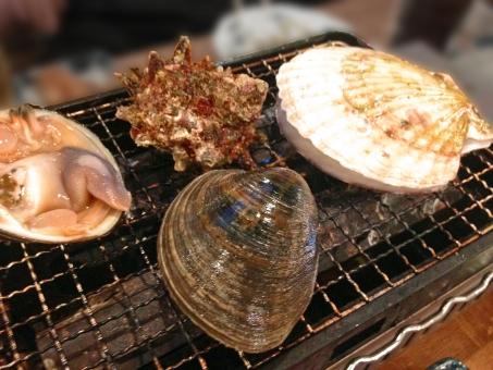 浜焼き 焼き物 網焼き 貝 貝類 魚介類 魚貝類 魚貝 魚介 海鮮 海鮮料理 魚介料理 魚貝料理 食べ物 食品 食材 料理 調理 グルメ ほたて 帆立 ホタテ さざえ サザエ 栄螺 白蛤 ホンビノスガイ 蛤 ハマグリ はまぐり
